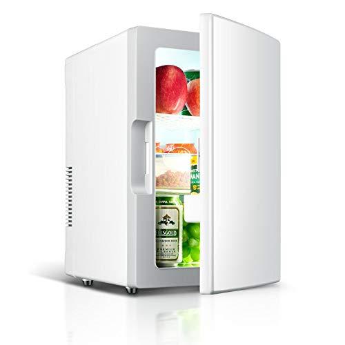 YY Mini Coche Refrigerador 12V 220V 18L AUTO VIAJE Refrigerador ABS Inicio Cooler Congelador Cálido Portátil Multifunción Anti-Rotten (Color Name : Silver)
