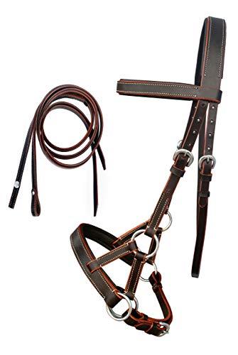 Maxtrv English Western Horse Leather BITLESS Bridle SIDEPULL Halter REINS Brown 7701BR