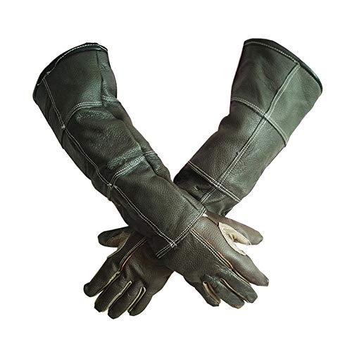 Guantes de manipulación de los animales guantes D alimentación para gato, perro, pájaro serpiente, loro, lagarto, reptil, animales salvajes, anti-morsure/égratignure, jardinería, guantes de protección