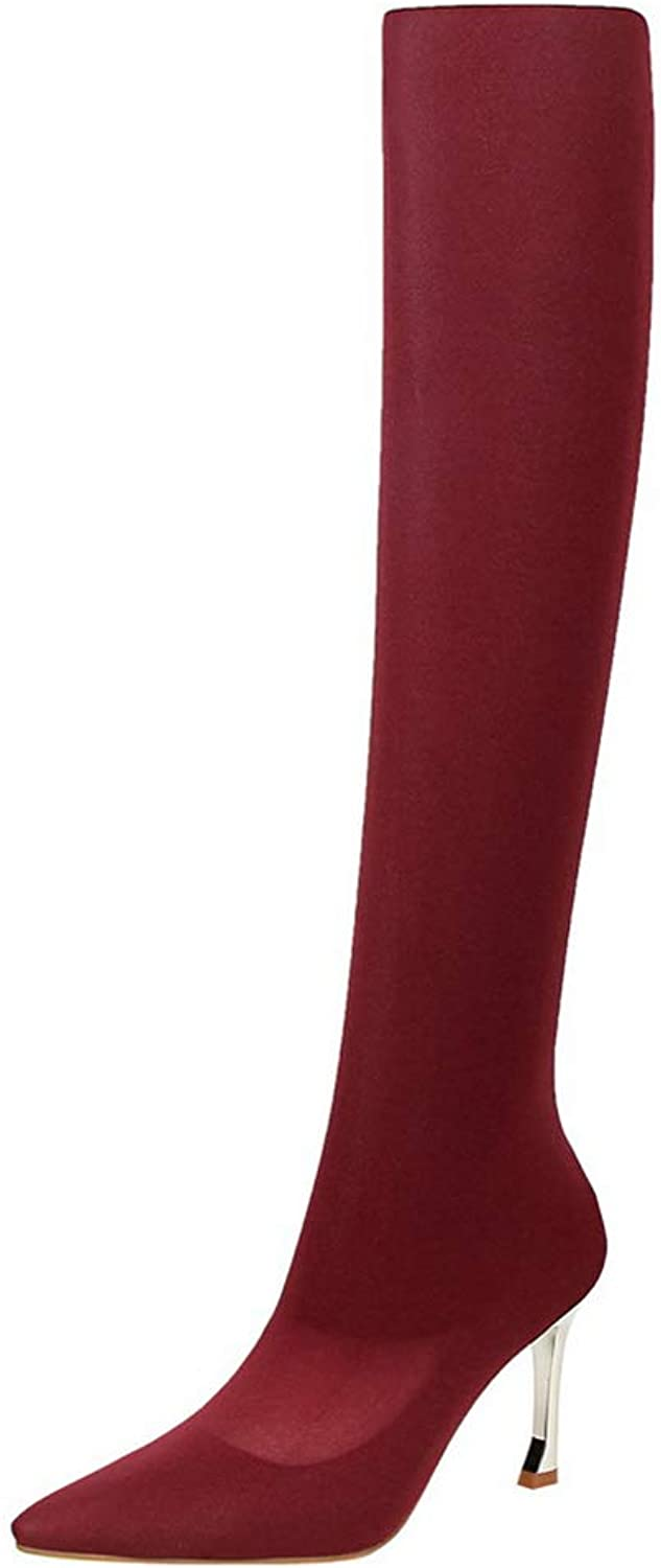 York Zhu Women's Thigh High Stretch Boots Pull on Pointy Toe Stiletto High Heel Boots