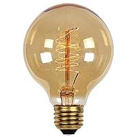 040ワットg25クリアTimeless Vintage Inspired電球with Mediumベース 0412700 1