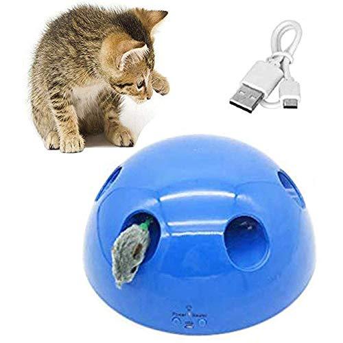 Surakey Elektrische Katzenspielzeug, Intelligenzspielzeug Interaktives Spielzeug für Katzen Amusement Jagen,Automatischer Maus Teaser-Maus-Quietschgeräusch Katzenmaus-Trainingsspielzeugs