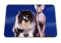 26cmx21cm マウスパッド (猫カップルふわふわスフィンクス) パターンカスタムの マウスパッド