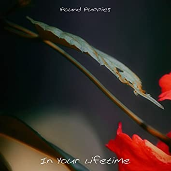 In Your Lifetime
