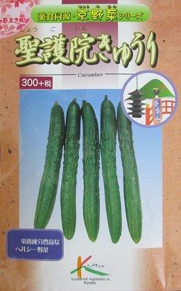 胡瓜種 聖護院きゅうり タカヤマシードの京野菜シリーズのキュウリ種です。グリーンデポ