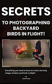 Secrets to Photographing Backyard Birds in Flight by [by scott prince]