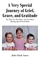 A Very Special Journey of Grief, Grace, and Gratitude: No, They Are Not Okay...but It's Okay! Raising Special Needs Kids