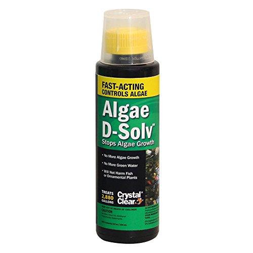 CrystalClear Algae D-Solv 8 oz