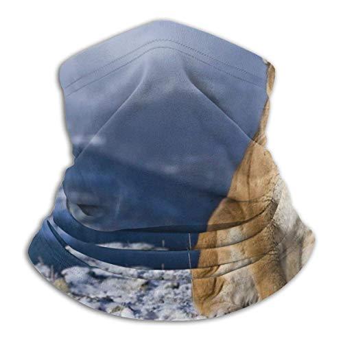 Calentador de cuello de microfibra de esquí cálido Puma Fashion