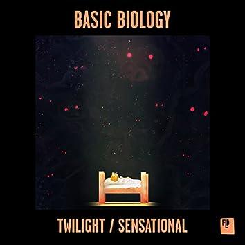Twilight / Sensational