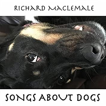 Songs About Dogs