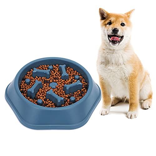 Langsam fütternde Hundenapf, Nette und Lustige Langsame Fütterung Hundenapf, Langsam Fressen rutschfeste Futternapf für Welpen und mittelgroße Hunde, Blau