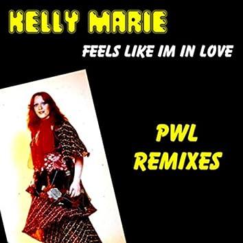 Feels Like I'm in Love (PWL Remixes)