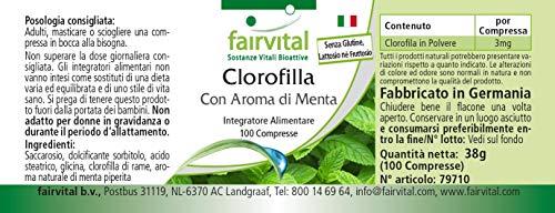 Chlorophyll Kautabletten mit Minzaroma – Großpackung für 100 Tage – VEGAN – 100 Kautabletten - 6