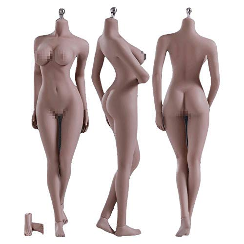 HiPlay 12 Inch Female Seamless Action Figures-Realistic Full Silicone Body Suntan Skin & Stainless Steel Skeleton-1/6 Scale Super Flexible Female Figure Dolls for Arts/Drawings/Photography (S12D)