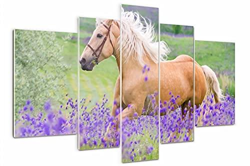 Tulup Cuadro de Cristal 170x100cm Impresión de 5 Piezas Pintura sobre Vidrio Imagen Gráfica Decoracion de Pared Moderno Vidrio Cristal - Un caballo en un campo de lavanda