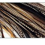 Sexy Sparkles - Extensión de pelo de plumas, de 7 a 11 pulgadas, rubio S Grizzly Featehrs (5 plumas unidas en la punta)
