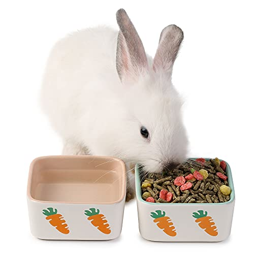 JanYoo Gamelle en céramique pour lapin, chat, cochon...