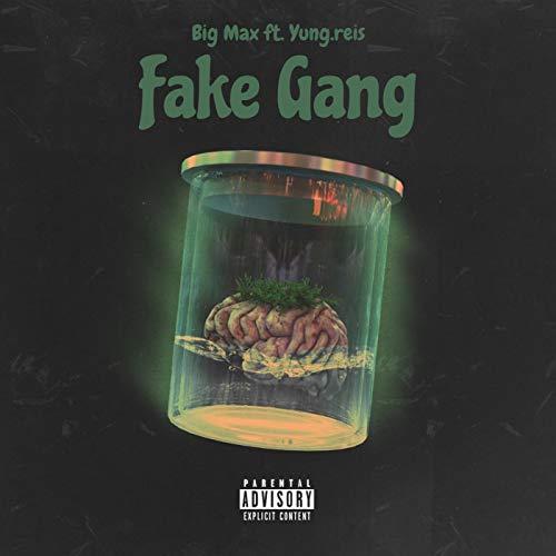 Fake Gang (feat. Yung.reis) [Explicit]