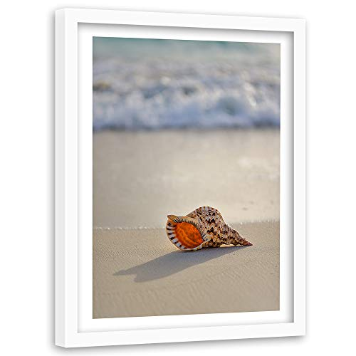 Tableau cadre blanc Nature Impression Art Coquille Plage Water marron 60x90 cm