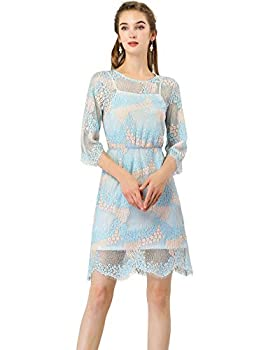 Allegra K Women s Floral Lace Round Neck Scalloped Hem Semi Sheer A-Line Dress S Blue