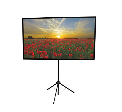GO-80 Portable Projector Screen | 80 inch | Mounts on Tripod AND Wall | 16:9 format | 9 lbs | 2 minute setup | Includes Carrying Bag | For Mobile presentation and Home Entertainment |4K Ultra HD ready