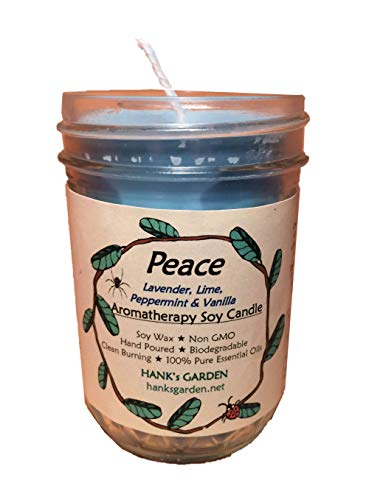 DREAM Sleep Relaxation Aromatherapy Soy Candle - Lavender, Lemon, Dill & Vetiver - 100% Pure Essential Oils, Biodegradable, Natural Dyes and Wicks, Clean Burn, Non GMO (Soy Candle - 8 oz Jar)