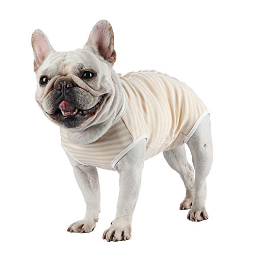 Etdane Dog Diapers Sanitary Panties Physiological Period Shirts Surgical Recovery Suits for Male and Female Dogs, Yellow/Medium