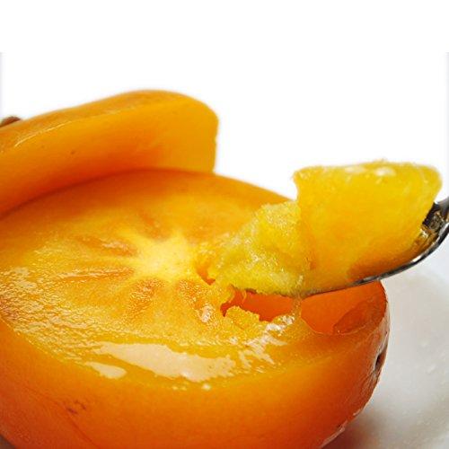 まるごと柿シャーベット 約1.7kg前後 種なし 庄内柿 完熟 瞬間冷凍 デザート フルーツ アイス 保存料不使用
