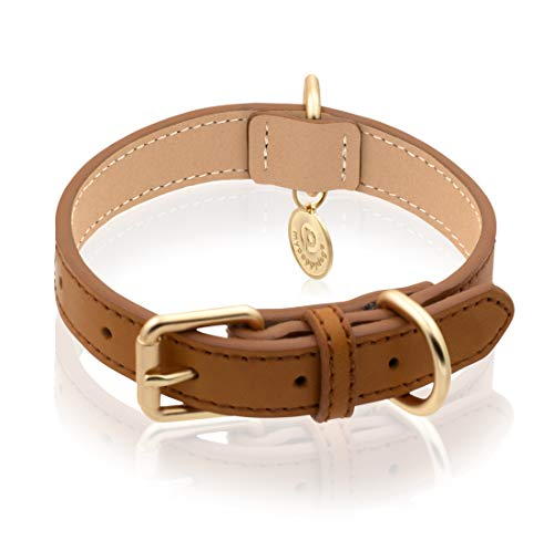 mypappydog Real Leather Dog Collar for Small, Medium Dogs and Puppies | High Tensile Force Double D-Rings for Dog ID Tag + Leash | Soft Comfortable and Durable Dog Collar | Medium / TAN