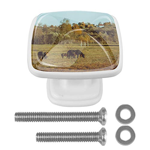 Paquete de 4 pomos para cajones de aparador, tiradores de cocina, pomos de cristal para gabinetes de cocina, aparador, armario, caminata a caballo