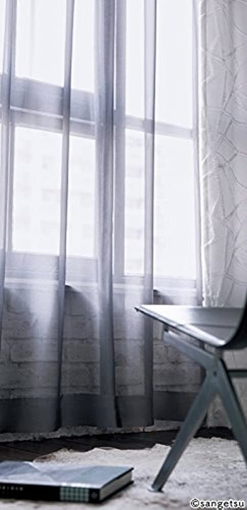 贈り物容器代表サンゲツ ツヤ感のあるシンプルなカラーシアーレース フラットカーテン1.3倍ヒダ SC3745 幅:150cm ×丈:260cm (2枚組)オーダーカーテン