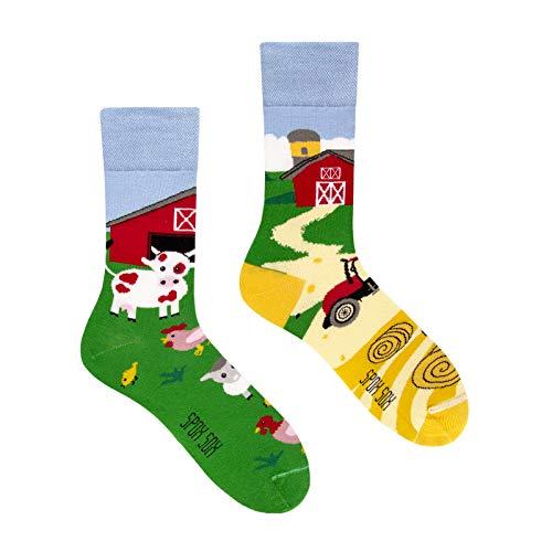 Spox Sox Casual Unisex - mehrfarbige, bunte Socken für Individualisten, Gr. 44-46, Farm
