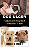 DOG ULCER: Pet Guide on Getting Rid of Canine Ulcers at Home