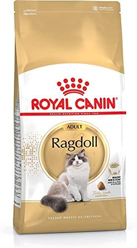 ROYAL CANIN Cibo Secco per Gatti Adulti Ragdoll - 10000 gr