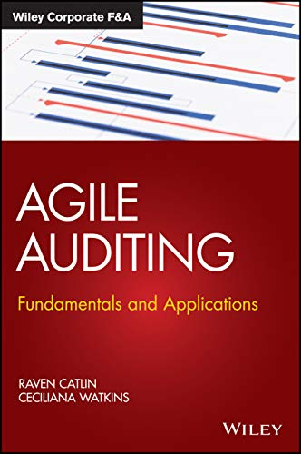 Agile Auditing: Fundamentals and Applications (Wiley Corporate F&A)