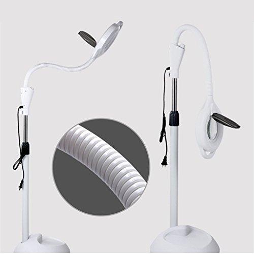 Lampes de sol 8x Diopter LED Magnifying Light Rooling Stand Lampe Loupe Loupe Glass Len Facial Lumière Avec Réglable Col de Cygne Beauté Salon Bijoux Lumière de Lecture ( edition : Bouton de l'interrupteur d'alimentation-30w )