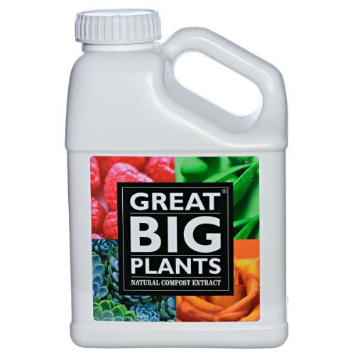 Great Big Plants Natural Compost Extract