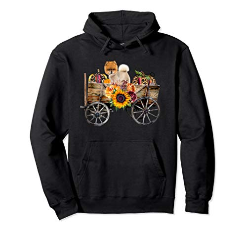 Pomeranian Clothing - Teddy Bear Cut Dog in Country Wagon Pullover Hoodie