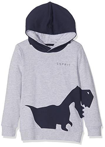 ESPRIT KIDS Jungen RP1504408 Sweatshirt, Grau (Heather Silver 223), (Herstellergröße: 116+)