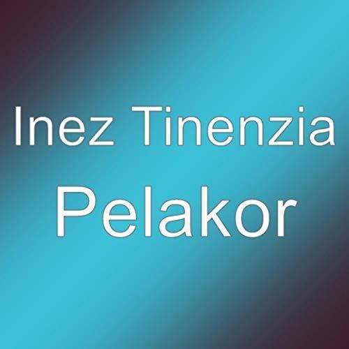 Inez Tinenzia