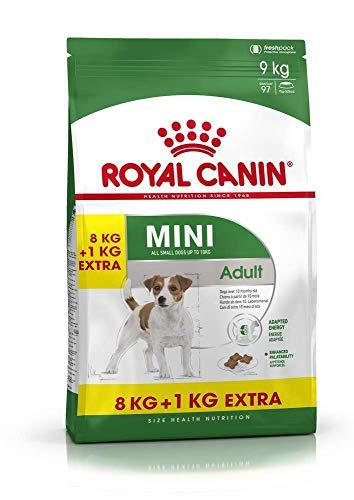 Royal Canin Comida para Perros Mini Adult, 8 + 1 kg Gratis, 1 Unidad (1 x 9 kg) 🔥