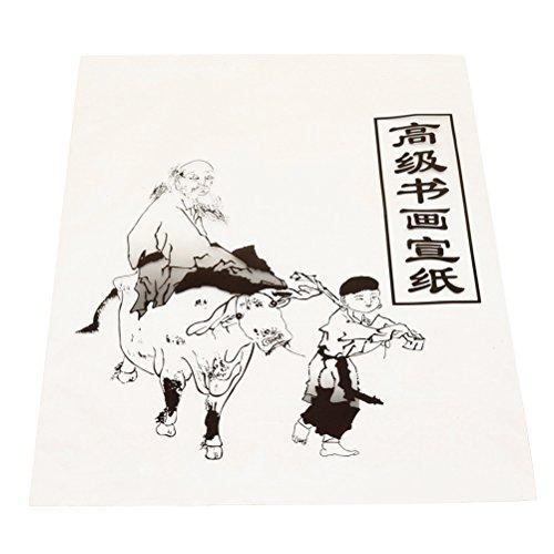 ROSENICE Reispapier Xuan Papier Chinesische Kalligraphie Sumi Malerei Praxis 30 Blätter