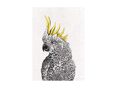 Maxwell & Williams Marini Ferlazzo Birds - Strofinaccio stampato, motivo: cacatua, in cotone, colore: nero/bianco, 50 x 70 cm