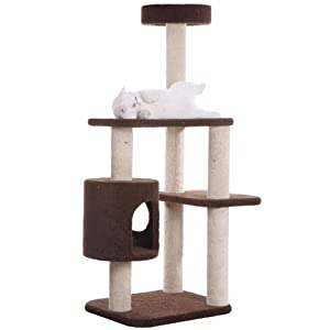"Armarkat 2013 Carpeted Cat Tree Gym Scratching Post F5502 Coffee Brown 54 inch, Overall Dimensions: 36″""(l) x22(w) x54(h)"