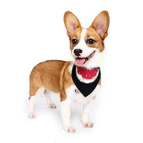 HaiMa - Collar de algodón con diseño de perro