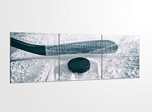 Acrylglasbilder 3 Teilig 150x50cm Eishockey Scheibe Puck Sport Spiel_ Acrylbild Bilder Acrylglas Wand Bild Kunstdruck 14?5383, Acrylglas Größe 6:BxH Gesamt 150cmx50cm