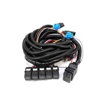 Amazon.com: Boss Part # MSC08001-2008-Up Vehicle Side Wiring Harness 13-Pin:  AutomotiveAmazon.com