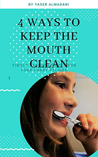 4 ways to keep the mouth clean (English Edition)