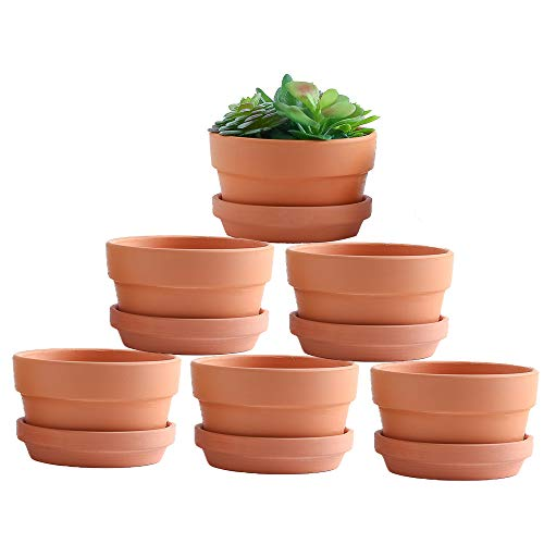 Yishang 5 Inch Shallow Terracotta Clay pots with Drain Hole,Ceramic Plant pots for Indoor/Outdoor Plants,Unglazed Bonsai Planter with Saucer/Tray for Cacuts/Succulent Plants